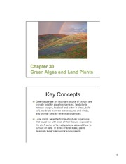 30 Green Algae & Land Plants slides