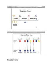 KIN 1088B Class Notes Reaction time