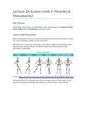 Lecture 26 (Lower Limb 2–Muscles & Movements)
