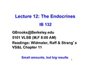 Lecture_12r_Endocrines