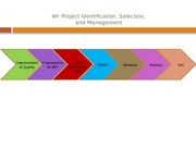 BPI Project Selection S