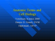 Anatomic+terms+and+cell+biology+2008
