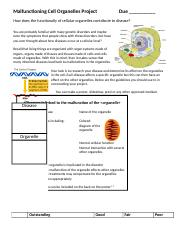 cell_organelle_disease_project.doc