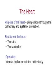 The heart.ppt