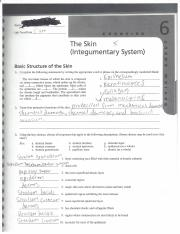 review sheet exercise 37b Review sheet exercise 11 blood analysis name: lab time/date: hematocrit determination 1 hematocrit values are usually ( higher / lower ) in healthy males, compared to healthy females give one possible explanation for this.
