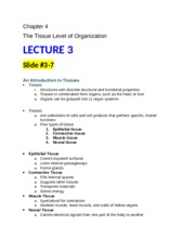 2015 ch_04_lecture3_outlines