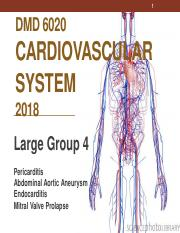 23. DMD_6020_Cardiovascular_System_Large_Group_4_-_2018-_Revised.pdf