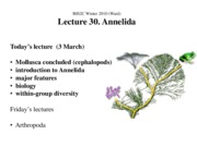 Ward_Lect30A_Annelida_ppt