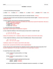 311C worksheet3_biomolecules+A-1