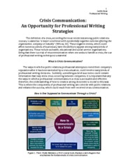Professional Writing Strategies Resource Paper