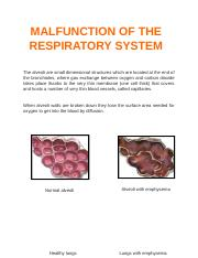 DISTINCTION - MALFUNCTION OF THE RESPIRATORY SYSTEM.docx