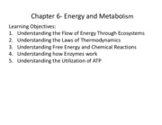 Chapter 6- Energy and Metabolism 2011