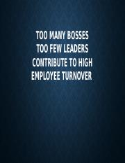 TOO MANY BOSSES.pptx
