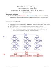 8 - Organizational Concepts Notes
