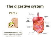 ANP 1107 The digestive system part 2, JK.ppt WEBSITE