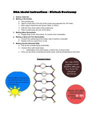 DNAModelInstructions_BiotechBootcamp2014.pdf