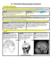 2.1._The_Brain_Study_Guide_by_Hisrich (1)
