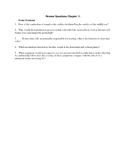Review Questions Chapter 11