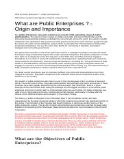What are Public Enterprises.docx