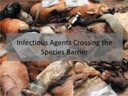 15. Infectious agents crossing the species barrier