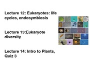 BIS+2c+lect+13+Rizzo+microbial+eukaryote+diversity-1