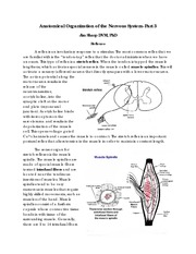 Anatomical Organization of the Nervous System Pt 3