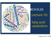 2015 - BCH3120 - Lecture 10-S