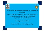 Programa - Inteligencia Artificial