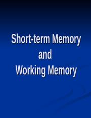 6 STM -Working Memory