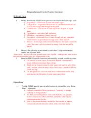 NOVA World in Balance Worksheet - NOVA World in the Balance ...