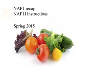 NAP II Introduction