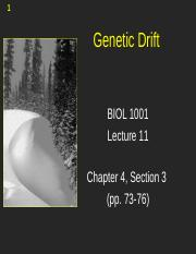 Lecture 11 -  Genetic Drift (2).pptx