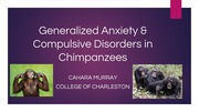 Generalized Anxiety & Compulsive Disorders in Chimpanzees.pptx