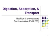 3 - Digestion, Absorption, & Transport(1)