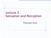 Lecture_3-_Sensation_and_Perception_New