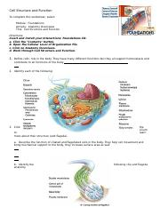 Ch. 3 Cell Structure and Function.doc