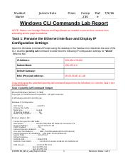 Eulo_COMP230_Wk1_Lab_Report.docx