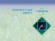 Chapter 5 - Efficiency and Equity