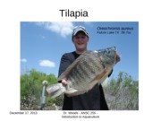 Lecture 12-Tilapia