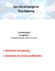 Guest+lecture+on+hydrogels%2C+tissue+engineering+and+stem+cells