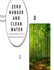 Zero Hunger and Clean Water.pptx