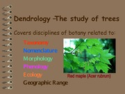 Lab 1 - Dendrology Terms