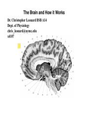 Intro to CNS and NeuroTs 16.pdf