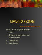 Nerve-Sys (1)