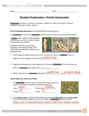 student exploration food chain gizmo answer key pdf