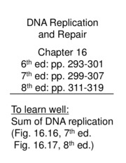 Lecture 30 DNA Replication Slides
