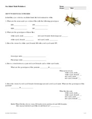 Sex Linked Traits Worksheet F09 Sex Linked Traits Worksheet Name
