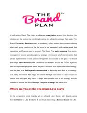 Brand marketing  plan report outline(1) (1)