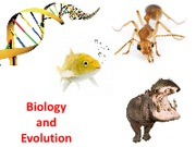 Chapter 2 Biology and Evolution
