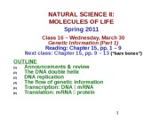 MOL CLASS 16 - Genetic Information (Part 1) (class notes S11)